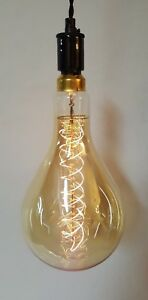 Giant Edison Bulb Plug In Pendant Light Vintage Style with 12' Cord Whiskertin