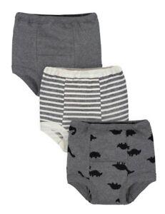 GERBER Organic Cotton Reusable Training Pants, 3pk Toddler Boys Gray 2T Dinosaur