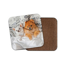 Pomeranian Chihuahua Dogs Coaster - Cute Best Friends Awesome Cool Gift #16383