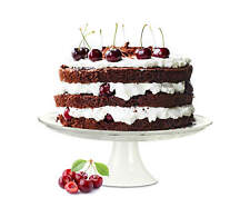 Cake Plate porzellanfuß KITCHEN Plate Cake Stand tortenteller Serving Plate
