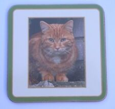 GINGER CAT DRINKS COASTER CORK BACKED CLASSIC COASTER WITH CAT PHOTO SOLD SINGLY