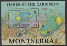 Elizabeth II (1952-Now) Fish British Montserratian Stamps