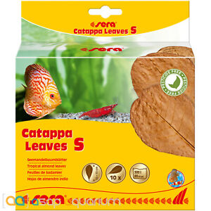 Sera Catappa Leaves Small 14cm 10 pieces Tropical Almond Leaves Blackwater Tanin
