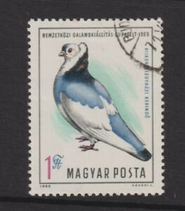 Hungary - 1969, International Pigeon Exhibition, Bird stamp - F/U - SG 2503