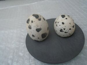Amazing delicate porcelain bird eggs salt and pepper set with slate tray  LOOK