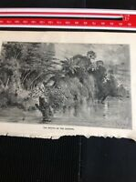 H2-2 Ephemera 1872 Book Plate Amazon - The Mouth Of The Igarape River