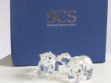 Swarovski Polar Bear SCS Boxed