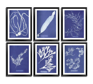 BOTANY ART PRINTS: Vintage Blue Victorian Plant Images: BUY 3 GET 4th FREE