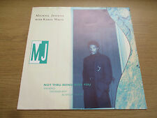 "Michael Jeffries – Not Thru Being With You (The Remix)  Vinyl 12"" 45RPM  W2797TX"