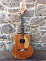 1968 Fender Palomino