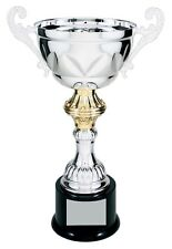 Fantasy Football Cup Trophy Award Silver/Gold Metal