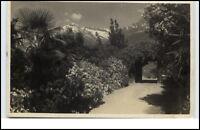 Merano Meran Südtirol Italien Cartolina AK 1930 gelaufen Passeggiata Tappeiner