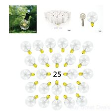Globe Bulbs String Lights Fits Sockets Watt Replacement Clear Glass Bulbs
