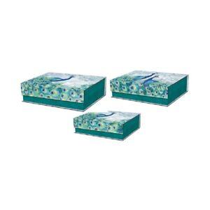 Punch Studio E1 Emerald Peacock Nesting Rectangle Flap Box 3pc Set 46616N