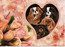 One Colors Of The Heart Pink Roses Cavalier King Charles Valentines