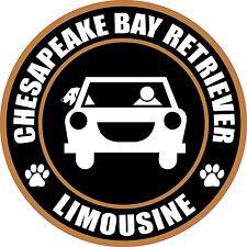 "Limousine Chesapeake Bay Retriever 5"" Dog Sticker"