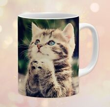 Animals ~ Cat, Kitten, Striped, Tabby, Praying, Gift ~ 11 oz Ceramic Coffee Mug