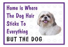 Home is Where The Dog Hair- Funny Shih Tzu Vinyl Car Van Decal Sticker Pets