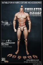 1/6 ZC Toys Accessory Set - Emulated Figure Muscular Body For Hot Toys Dam TTM19