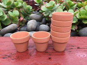 20x  Mini Terracotta Pot Succulent Cactus Flower Planter Home Office Decor 5.5cm