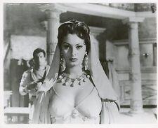SEXY SOPHIA LOREN  ATTILA 1954 VINTAGE PHOTO ORIGINAL #4 BUSTY