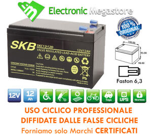 Batteria 6DZM-10 placca rinforzata alto assorbimento per bici elettriche 12V 12A