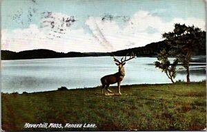 Kenoza Lake Haverhill MA c1905 undivided back Elk Deer Stag