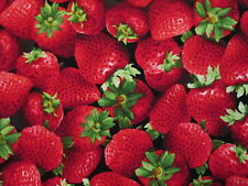 STRAWBERRY REALISTIC STRAWBERRIES FRUITS FOOD ITEM COTTON FABRIC FQ