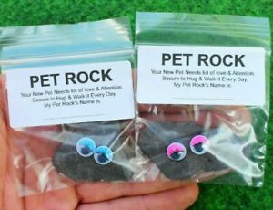 Pet Rock Great Novelty Present-Gift for Boy-Girl Him-Her, Emoji Face Birthday UK