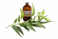 Aromatherapy Essential Oil Eucalyptus 10 ml Natural Pure Free Shipping