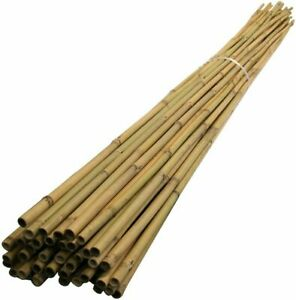 10x 6FT Heavy Duty Thick Quality Bamboo Garden Canes Strong Plant Support Poles