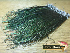 """FLY TYING FEATHERS - PEACOCK HURL STRUNG BUNDLE LARGE LARGE HERL 4-8"""" - NEW"""