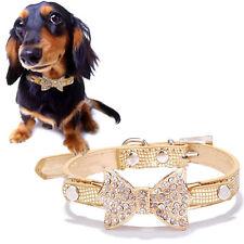 Collare gold fiocco fiocchetto strass collarino cane gatto animali domestici