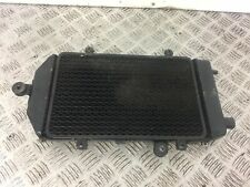 KAWASAKI VN900 VN 900 CUSTOM RADIATOR   YEAR 2010 (STOCK 387)
