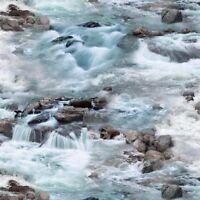 Whitewater Creek-Rough Water - Elizabeth's Studios Cotton Fabric