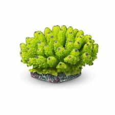 Coral artificial