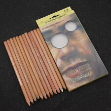 12 Colors Skin Tints Colored Pastel Pencils Artist Drawing Sketch Stationery