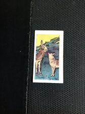 M6-1 Trade Card Cadet The Adventures Of Rin Tin Tin No 35