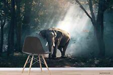 New Listing3D Elephant Sunshine Forest Wallpaper Wall Murals Removable Wallpaper
