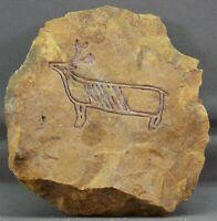 Deer Native American Petroglyph Rock Art Pictographs Etching Carving Limestone