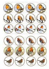 24 Edible cake toppers decorations Xmas Christmas Snow Robin Bird gardener