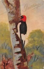 Red-Headed Woodpecker - No. 139 - Old Postcard