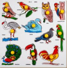 Little Genius Birds with Big Knob (Large) (Free shipping worldwide)