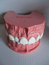 Blend-A-MED publicidad Madel dentista decorativas dentaduras modelo para pruebas 19x17x10 cm