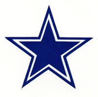 REFLECTIVE Dallas Cowboys fire helmet motorcycle hard hat decal sticker RTIC