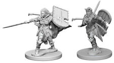 Pathfinder Deepcuts Unpainted Miniatures: Human Female Paladin (NEW)