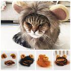 Cut Pet Costume Lion Mane Cat Dog Hat Wig Cosplay Stuffed Plush Dolls Retaining