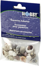 Hobby Sea Shells Reef Snail Decoration & Housing for Hermit Crabs Small 20 Pcs.
