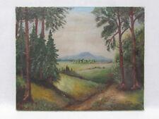 Antiguo paisaje pinturas, aceite/lienzo, sign. & DAT. p. f. Effner 61