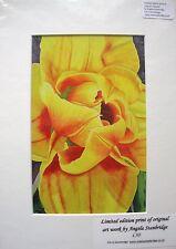 Compostella Tulip - PRINT OF ORIGINAL ART - LIMITED EDITION - MOUNTED